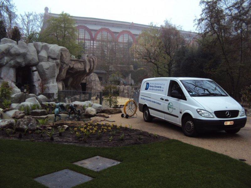 Zoo Antwerpen Zeeleeuwen